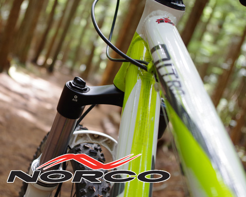 Norco bike on Powell River local trail